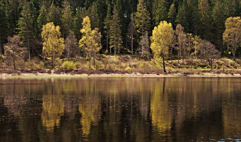 Loch Achray0003