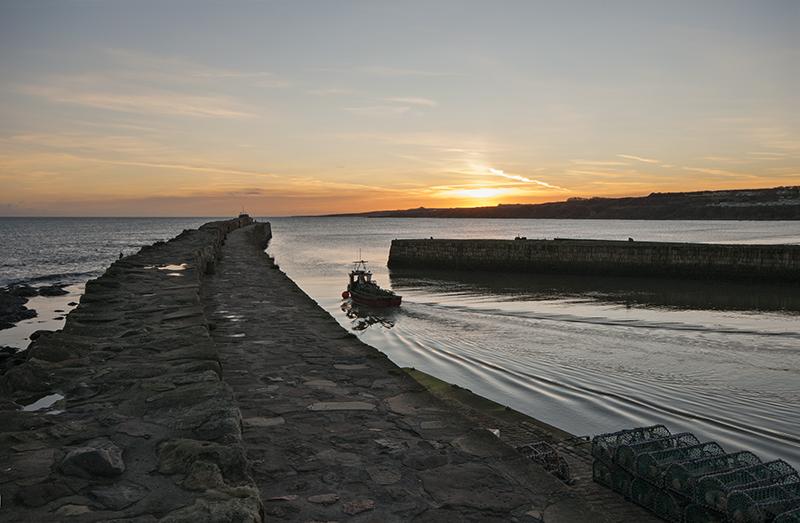 St Andrews harbour dawn departure0048