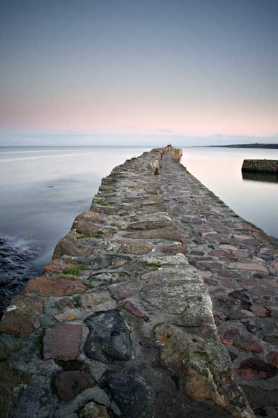 St Andrews harbour evening026