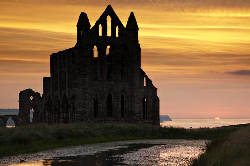 Whitby abbey075