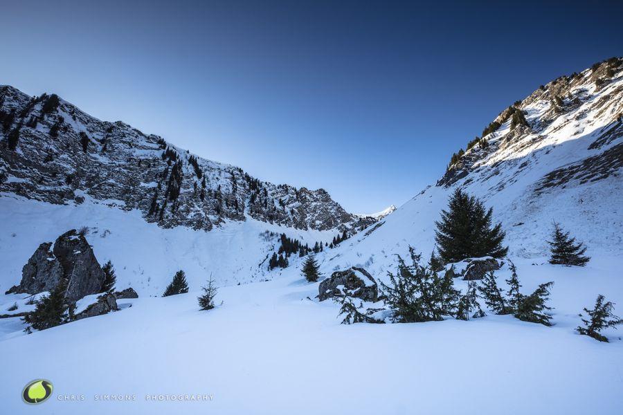 Alpine Vista III