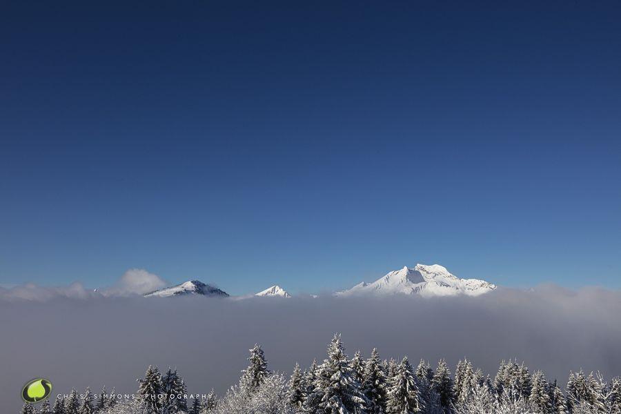 Alpine Vista IV