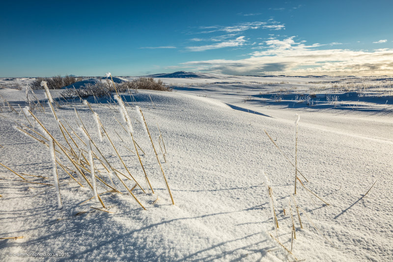 Arctic Vista II
