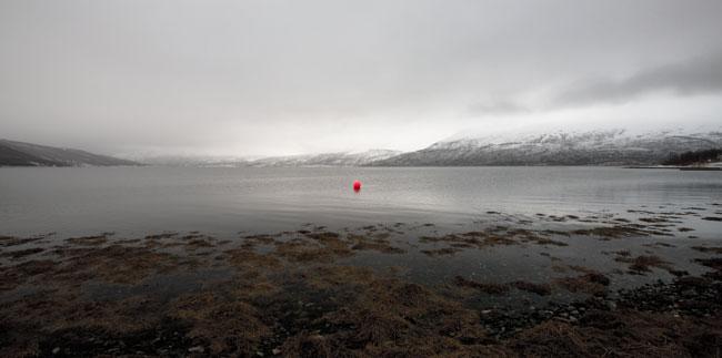 Buoy on Fjord