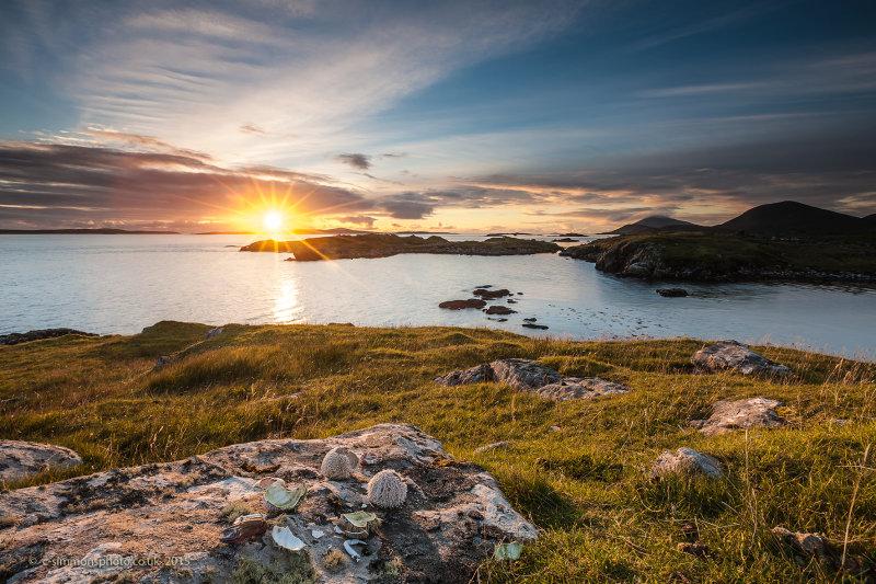 Carminish Bay Sunburst
