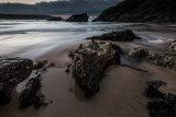 Crantock - Limpets & Rocks