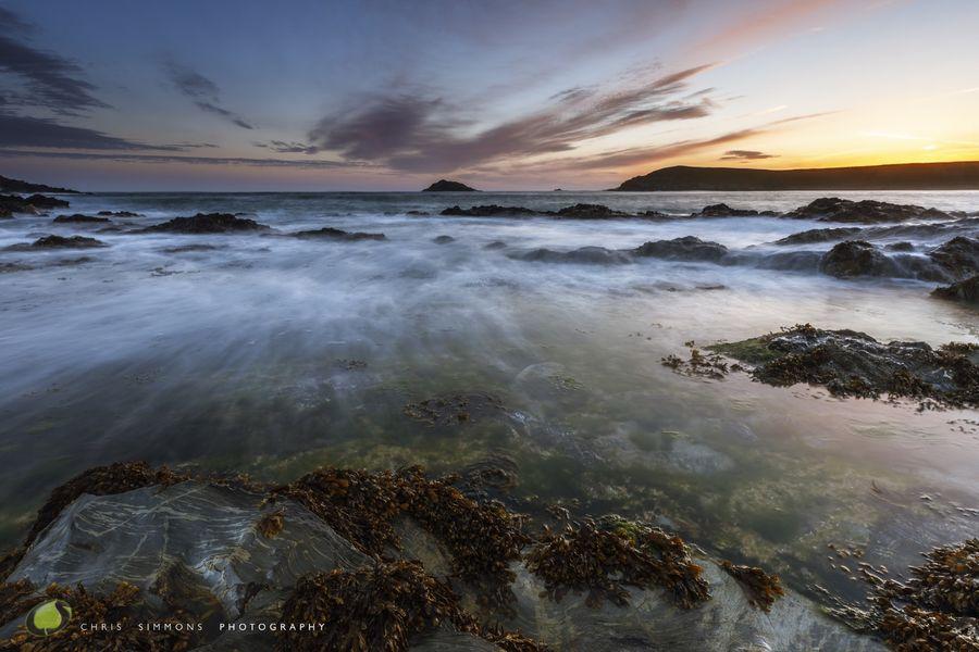 Crantock Kelp & Dawn