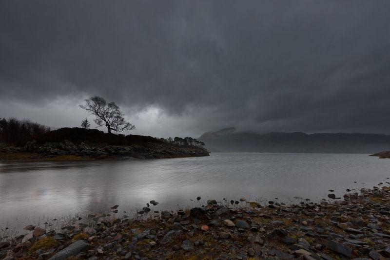Glenborrodale Lochside