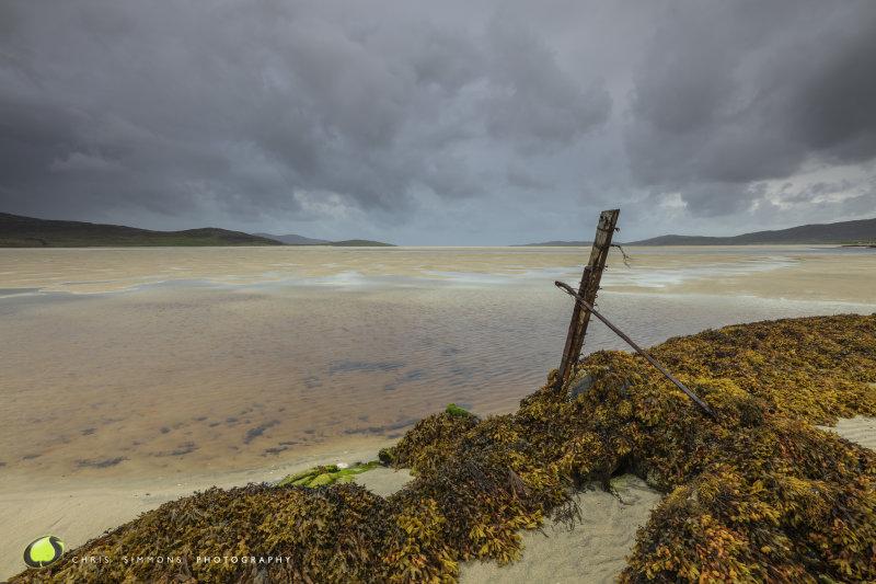 Harris Autumn Tidal Plain