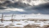 Icelandic Coastal Plain
