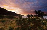 Inninmore gorse dawn