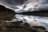 Loch Aline Ebb - Ardtornish