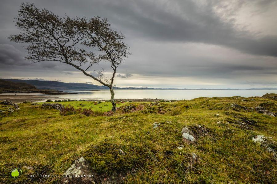 Loch Linnhe Vista