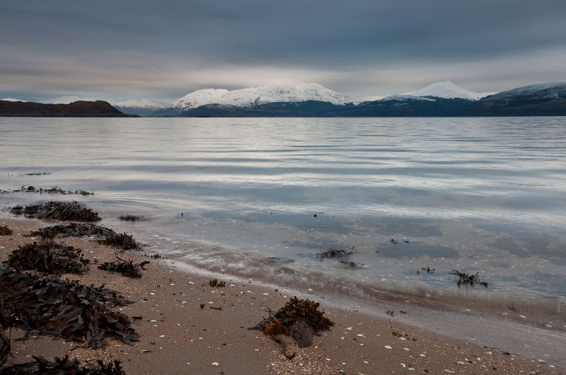 Loch Linnhe Wintering