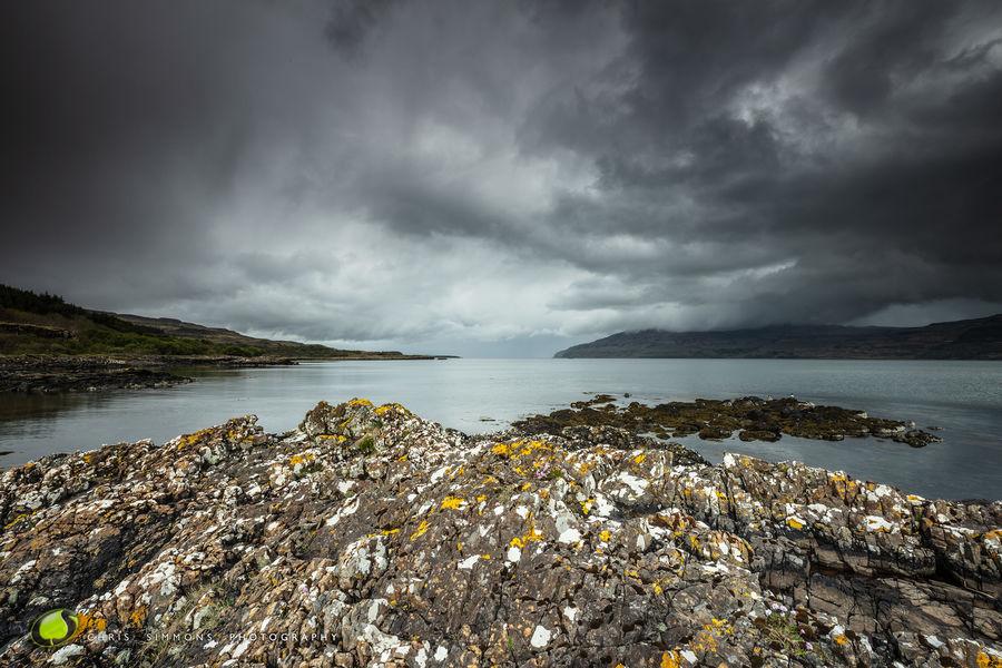 Lichen, Rock & Oyster Catchers