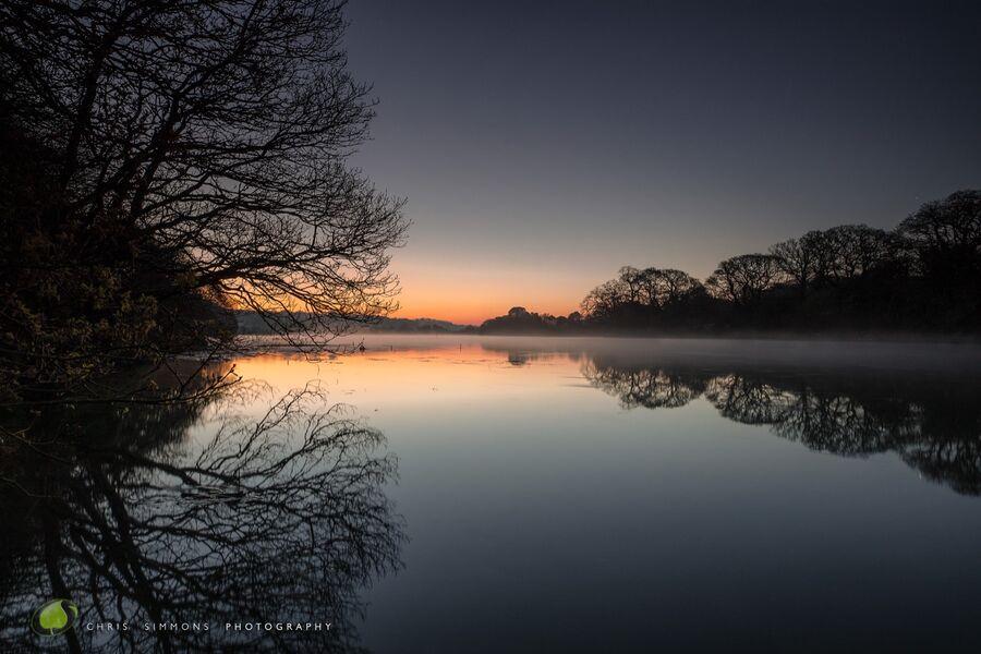 Morning Star & Estuary