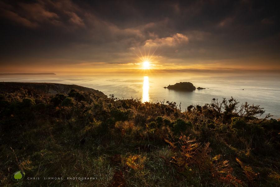 Nare Head - Autumn's Glow -rev