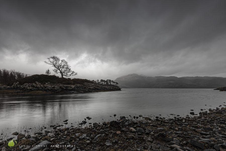 Rainy Loch Shore - C