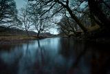 River Aline Winter dawning