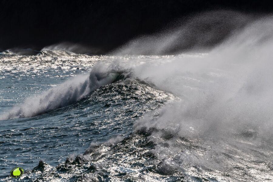 September Surf V
