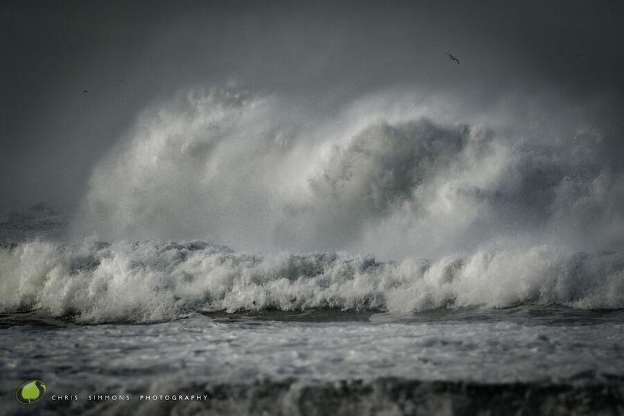 Silent Storm Greys
