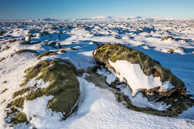 Snow Lava Field