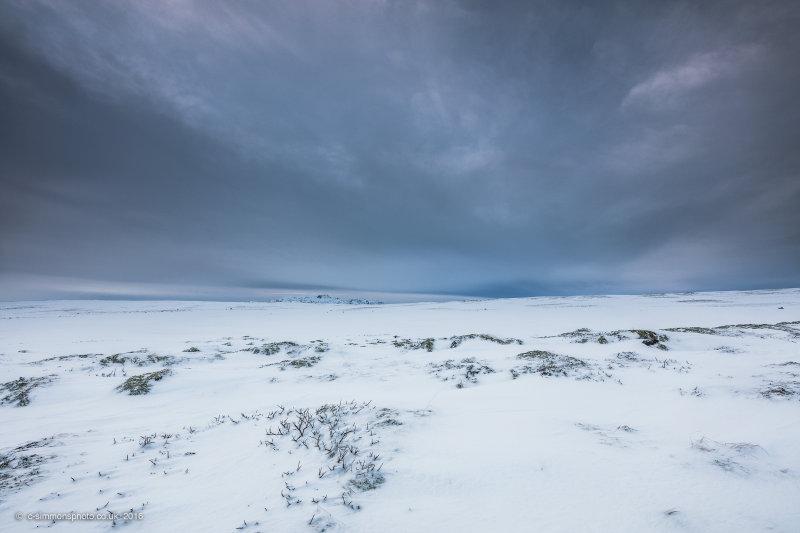 Snowscape Vista II