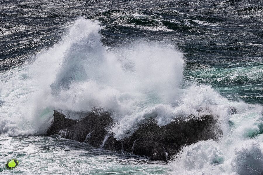 Soaring Seas I