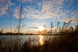 Stanwick lake