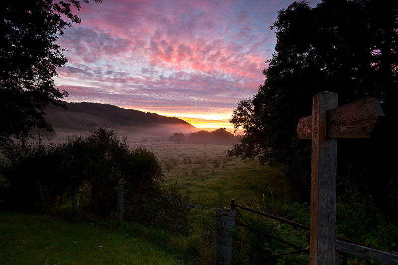Strathconon glen dawn