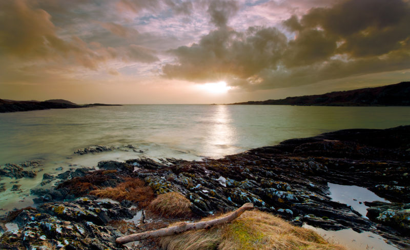 Sunset Driftwood - West Tarbert Bay