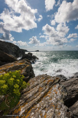 West Pentire Rocks Portrait