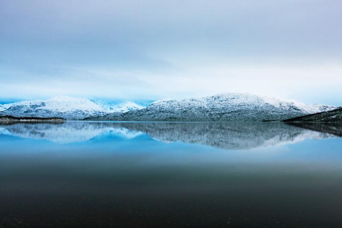 Pale Fjord Master