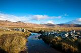 Winter Highland Glen II