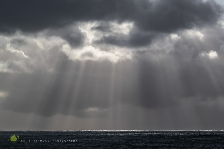 Winter Rays - Art