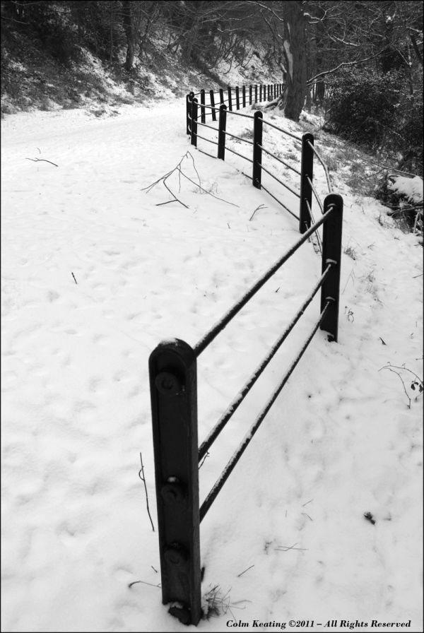 Furry Glen - fence