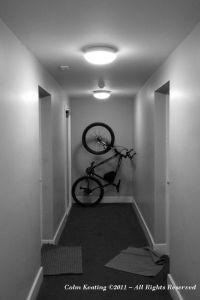 Bike Stand.