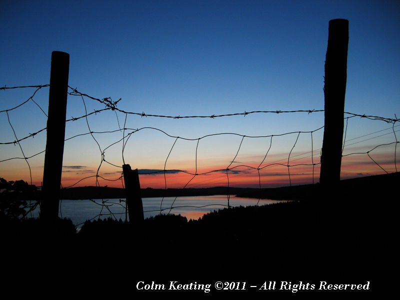 Barbed-Wire Silhouette