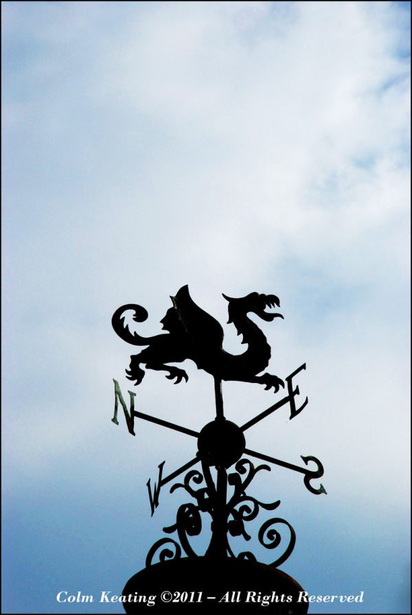 Weather Vane - Farmleigh