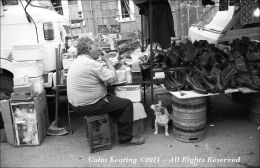 Lunchtime - for some, at Puck Fair