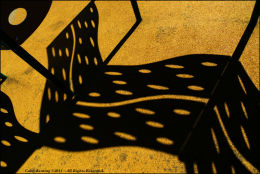 Shadows in the Playground - Phoenix Park.