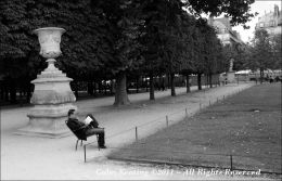 A Relaxing Read  - at Jardin des Tuileries
