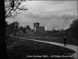 Tintern Abbey - Wexford