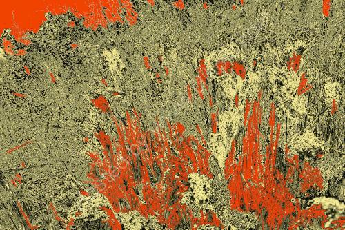 Orange Swathe