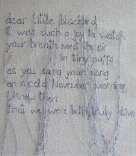 Dear Little Blackbird