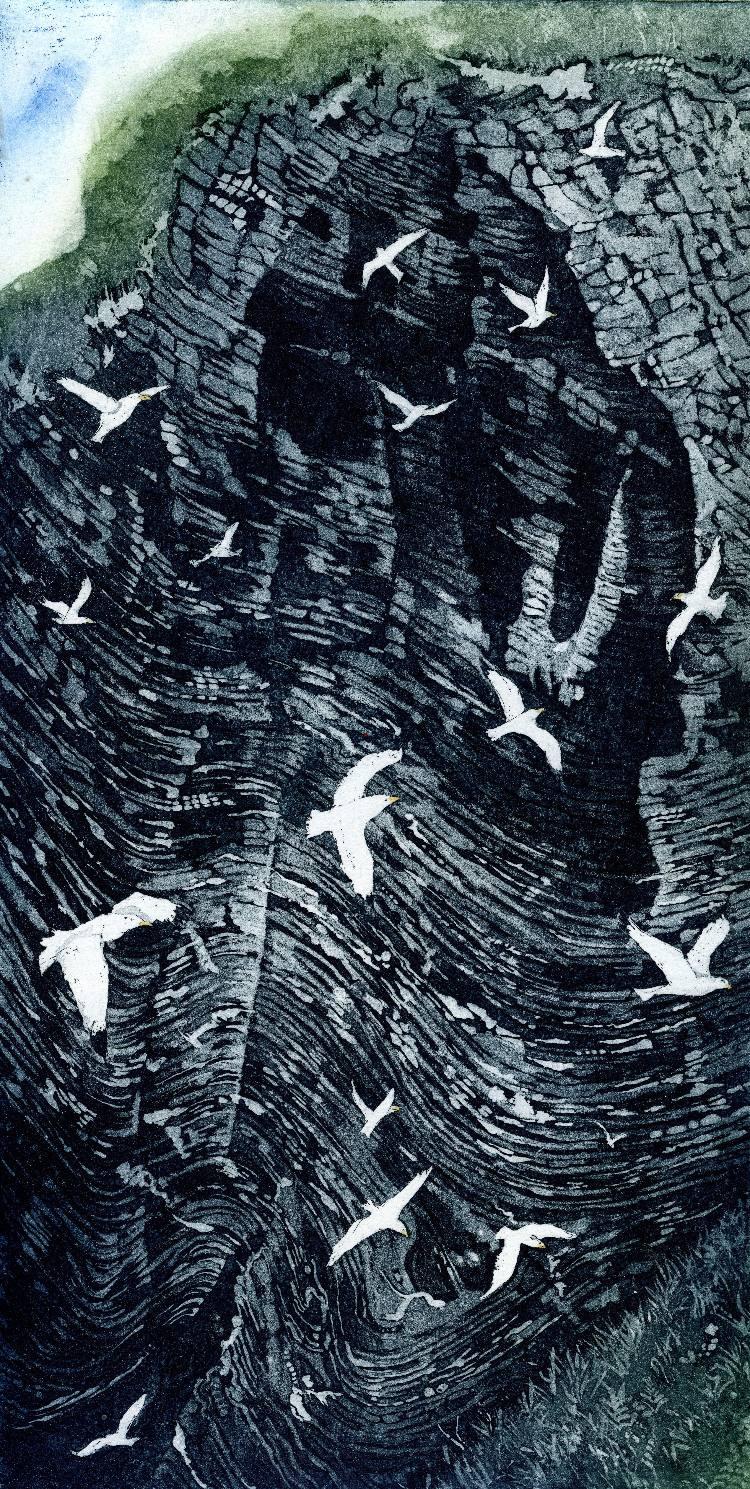 Gull Cliff