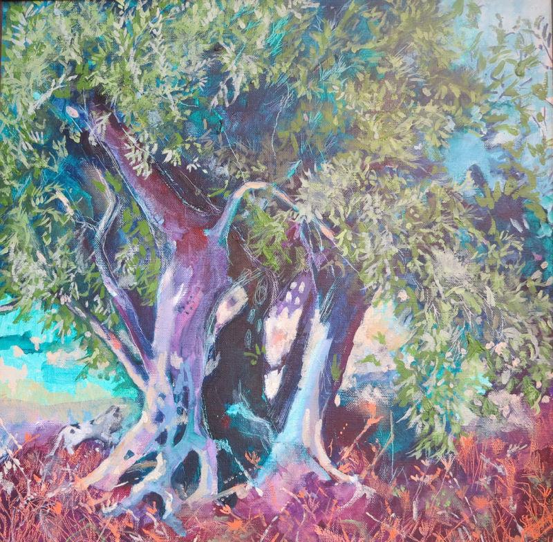 Olive Tree at Velhos Amigos