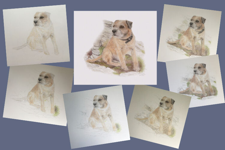 Alfie Photo Montage