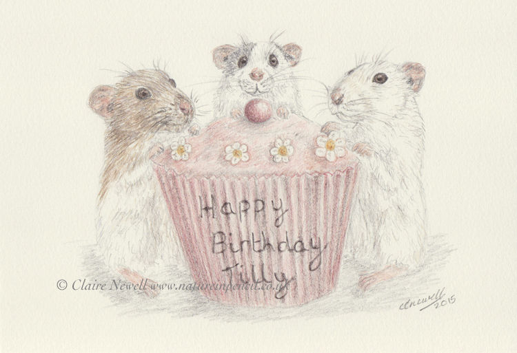 "'Happy Birthday"""