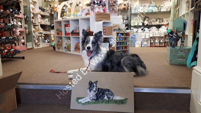 Tucker in Wool & Acrylic paint